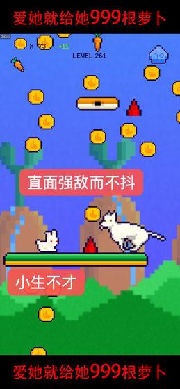 恩爱兔999根萝卜