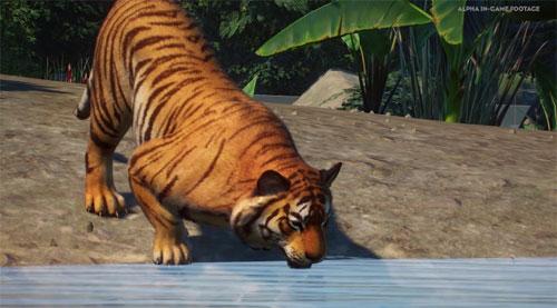 《动物园之星》游戏截图7