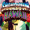 夏威夷劫案缩略图