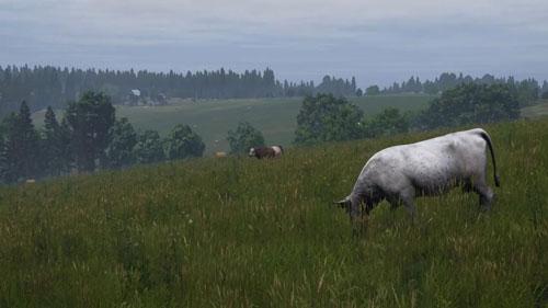 《DayZ》游戏截图3