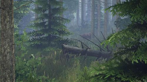 《DayZ》游戏截图7