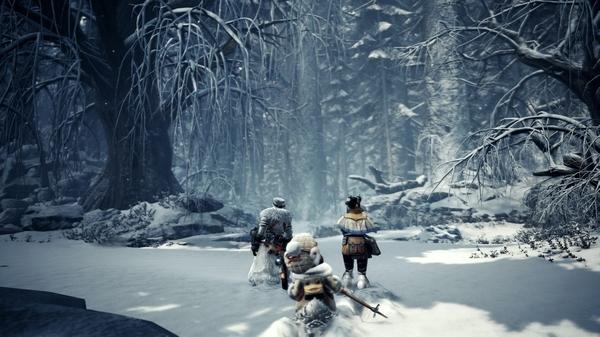 怪物猎人世界冰原图片