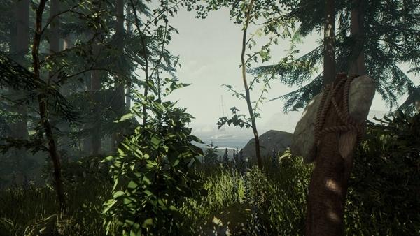 森林游戏图片6
