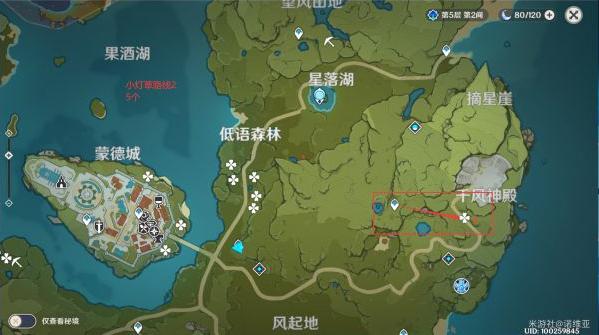 原神小灯草采集路线图