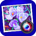 JixiPix Spektrel Art 破解版v1.1.9