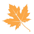 秋之盒刷机工具箱 绿色版V2019.4.13