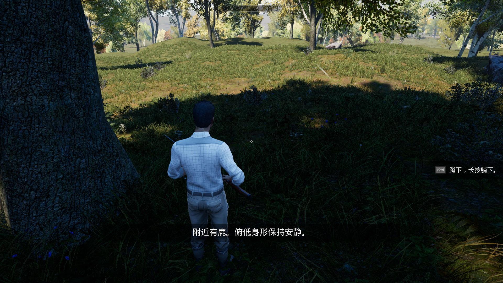 模拟狩猎游戏截图3