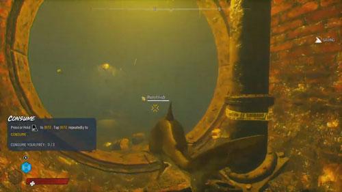 《食人鲨》游戏截图3