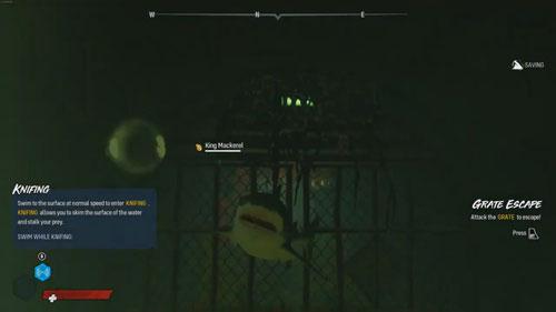 《食人鲨》游戏截图4