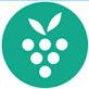 Berrycast(屏幕录制软件)官方电脑版v0.18.2 下载_当游网