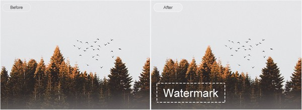 EasePaint Watermark Expert软件图片5