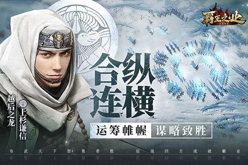 霸王之业:战国野望截图3