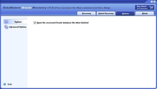 DataNumen Oracle Recovery3