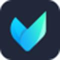 Vidmore (视频编辑软件)免费版v1.0.56.0 下载_当游网