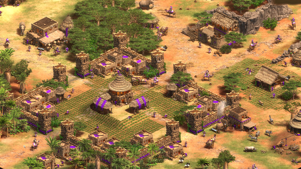 帝国时代2游戏截图2