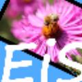 EasyImageSizer (图片压缩软件)免费电脑版v2.1.5