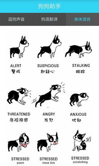 狗狗助手app