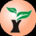 雨林风盘 免费版v10.3