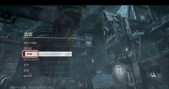 神偷4设置界面图片1