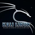 kali linux (附安装教程)官方最新版v2020.1