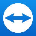 teamviewer12激活许可证生成器 绿色版v1.0