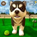 小狗模拟器中文版