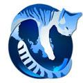 IceCat(冰猫浏览器) 官方版v78.2.0