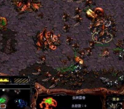 星际争霸1游戏图片5
