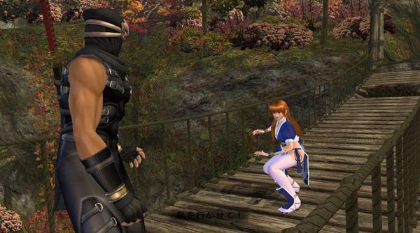 死或生2游戏图片5