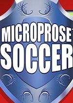 微程序足球