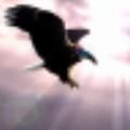 飞克视读2 官方版v2.1.3691