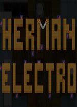 赫尔曼电子