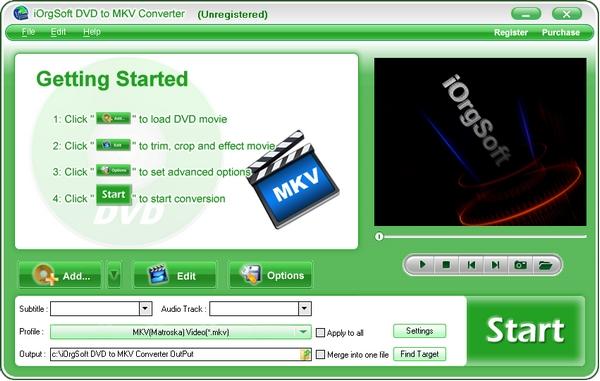 iOrgSoft DVD to MKV Converter图片