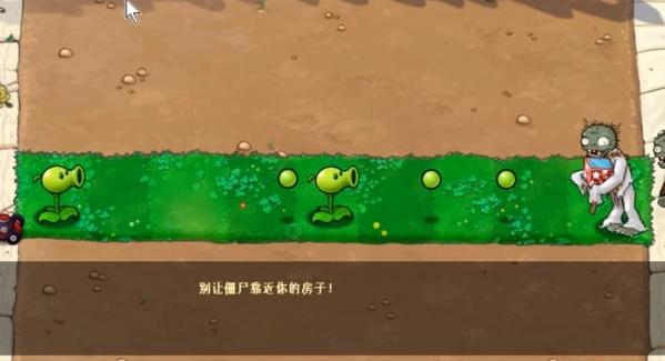 植物大战僵尸e版图片