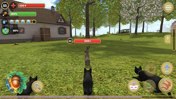 模拟猫咪:农场动物截图2