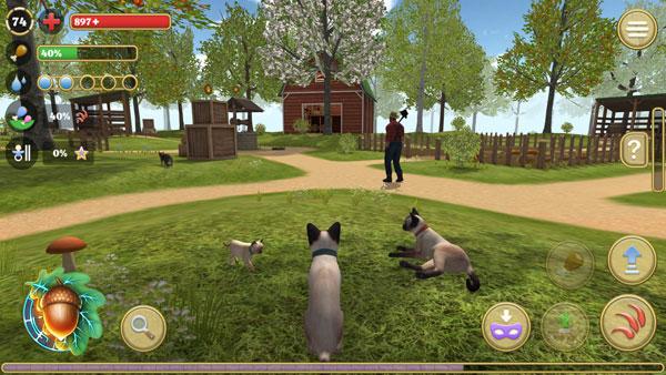 模拟猫咪:农场动物截图1