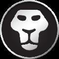 Black Lion Audio Revolution 2x2 USB