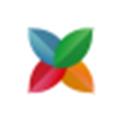 Mongomix (mongodb数据库管理工具)官方版v1.6.3