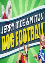 杰里赖斯和狗足球