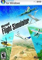 微软模拟飞行10中文版