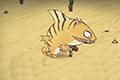 饥荒怎么杀死小虎鲨 饥荒小虎鲨打法技巧视频攻略