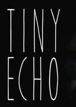 微小的回声(Tiny Echo)集成音乐包破解硬盘正式版v20171101
