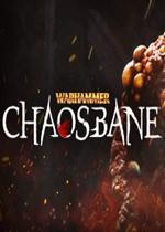 战锤:混沌祸害(Warhammer: Chaosbane)PC硬盘版