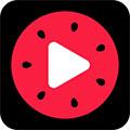 西瓜视频安卓版v2.7.3