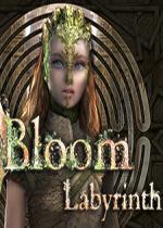 布鲁姆:迷宫(Bloom: Labyrinth)PC硬盘版