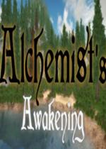 炼金术士的觉醒(Alchemist's Awakening)硬盘版