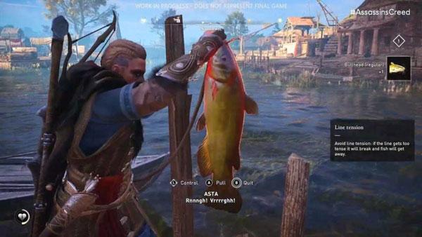 刺客信條英靈殿有哪些魚 全魚類Hash值表分享